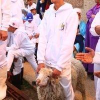 passover 2017 celebrant & lamb